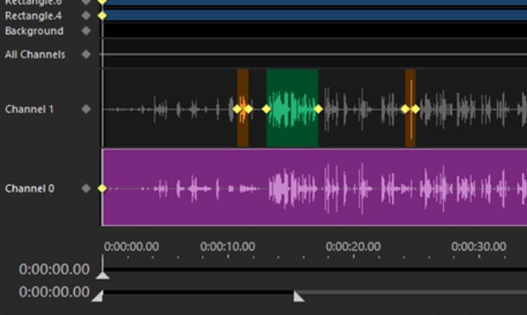 Audio Redaction Services